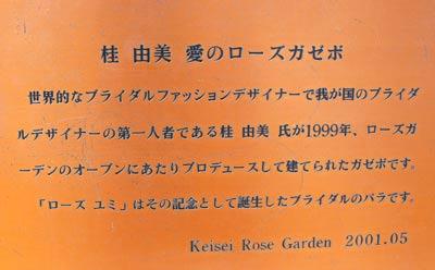 110607-4.jpg
